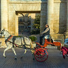 Man riding a horse cart, C�rdoba, C�rdoba Province, Spain