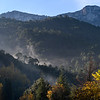 Elevated view of trees on mountain, Sierra De Cazorla, Jaen Province, Spain