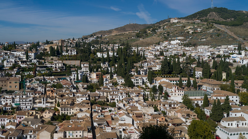 Tall cypress trees and houses in a city, Nasrid Palaces, Alhambra, Granada, Spain