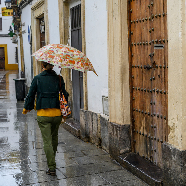 Rear view of a woman walking along the old town alley in rain, Distrito Centro, C�rdoba, C�rdoba Province, Spain