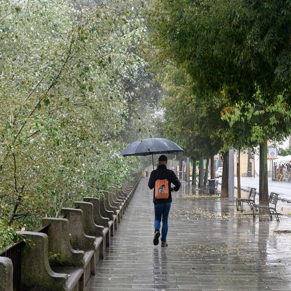 Rear view of a man walking on sidewalk during rainy season, Distrito Centro, C�rdoba, C�rdoba Province, Spain