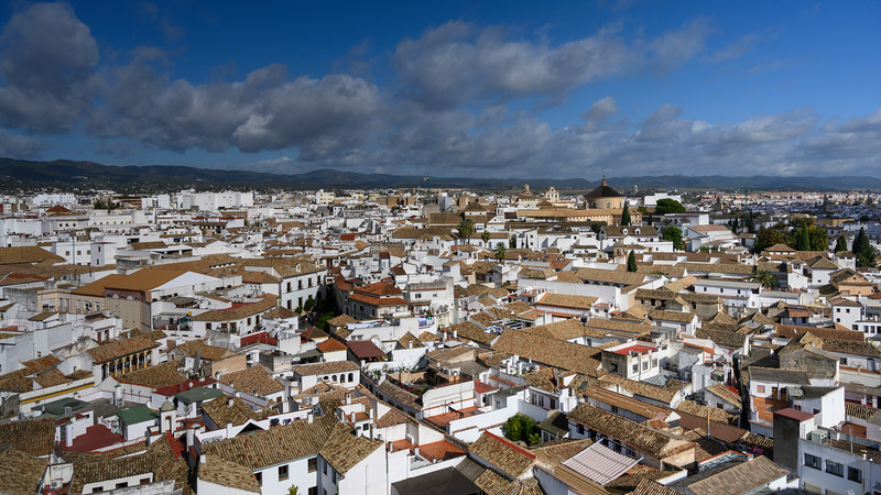 Houses in a town, Spain
