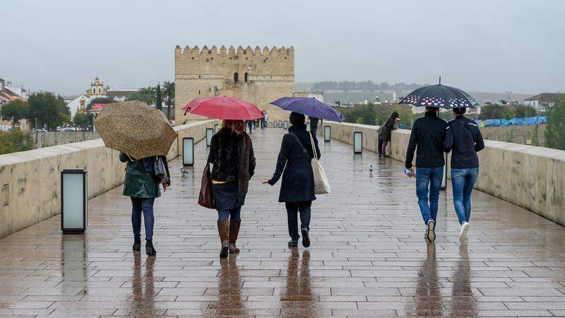 Tourist at historic Roman bridge of Cordoba, C�rdoba, C�rdoba Province, Spain