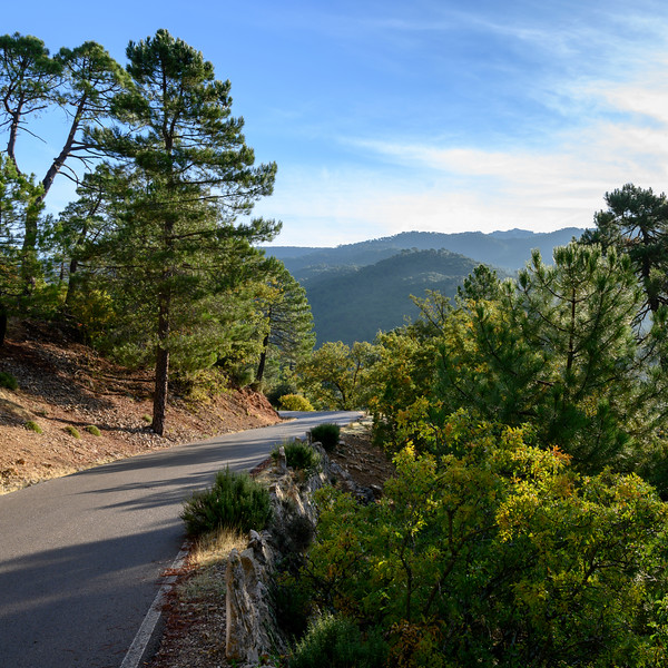 Scenic view of road, Sierra De Cazorla, Jaen Province, Spain