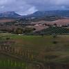 Scenic view of field, Ronda, Malaga Province, Spain
