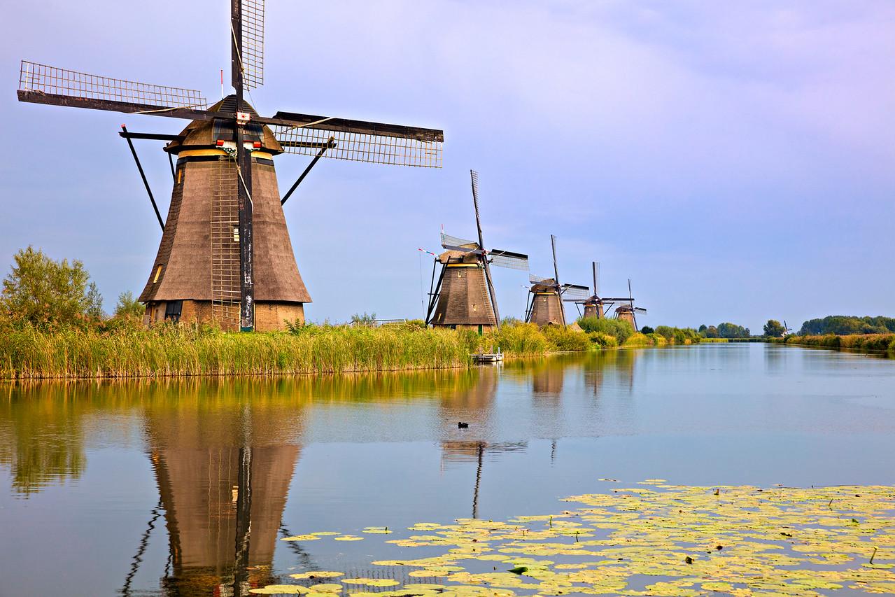 6777 Windmill