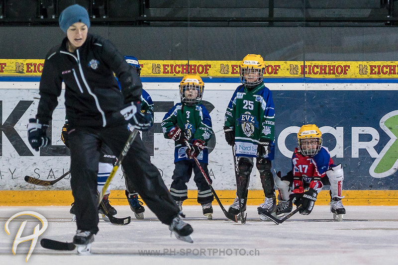 EVZ Hockeyschule
