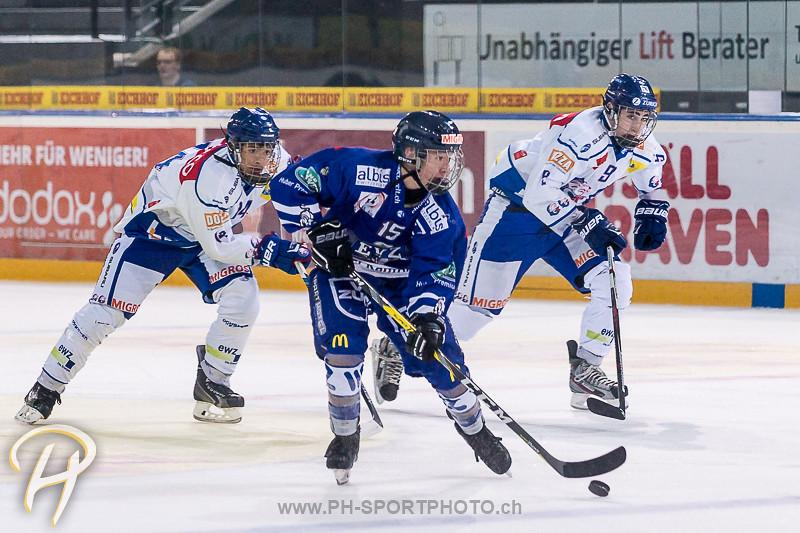Novizen Elite: EV Zug - GCK Lions - 2:0