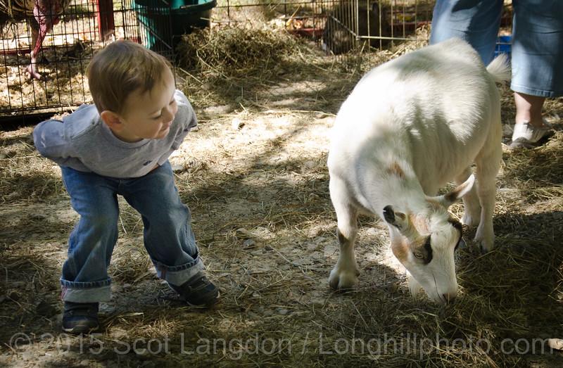(c) 2015  Scot Langdon - Longhillphoto com (11 of 48)