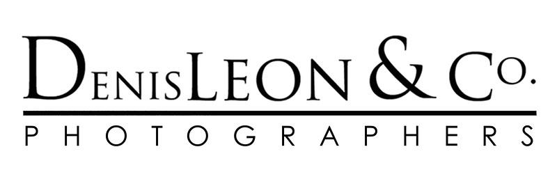 DL logo WHITE