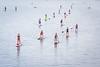 Gasparilla Stand Up Paddle Board
