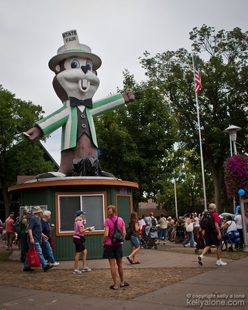 2011 MINNESOTA STATE FAIR