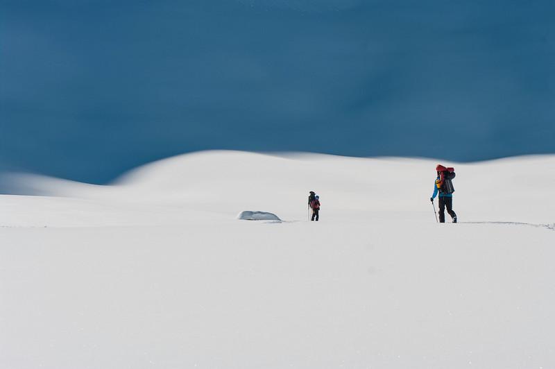 Up way - wapta icefield