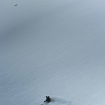 Skier: Emmanuel Demers Location: Roger Pass, B.C. Canada