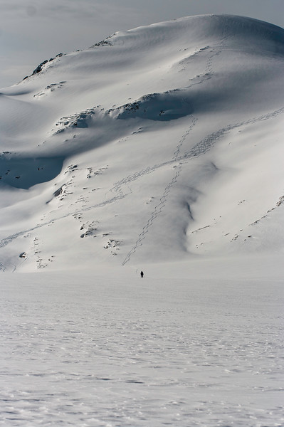 Skier: Vincent Lebrun and Emmanuel Demers. Location: Rhonda East Face, Wapta Icefield. Don't fallow, just explore. That day, we punch in 10 hours Saint-Nicolas Peak, Mont Gordon and Mont Rhonda.