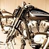 XR1200 TROPHY 2009