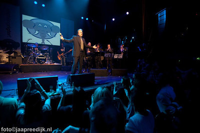 rigter live 09 geel webfoto jaapreedijk-2-2