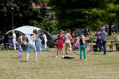 zomerzondag 29-6-2014 foto jaap reedijk-3212