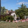 Brighton World War II Memorial, Brighton, MA.  Matt Parker Photos