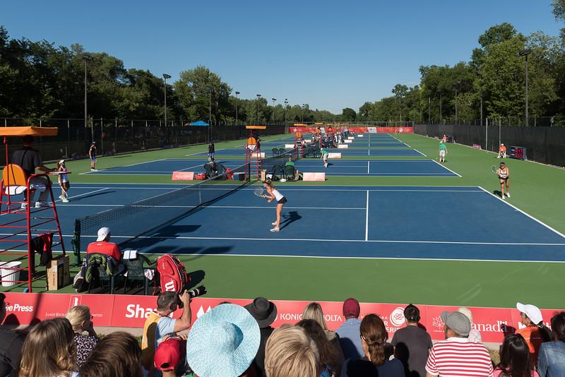 Tennis Female - Winnipeg Lawn Tennis Club - K Levit Photo