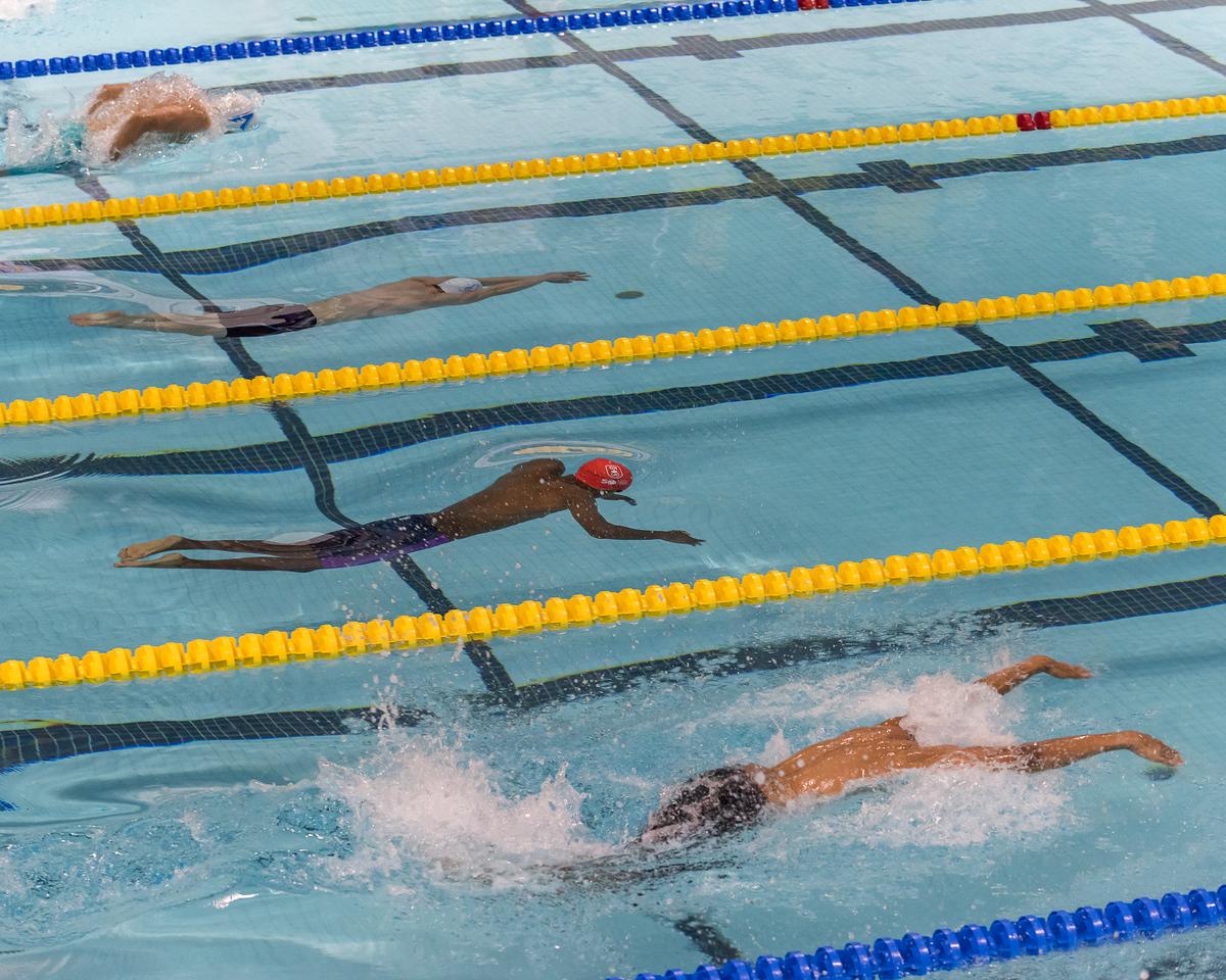 Swimming - Pan Am Pool - K Levit photo