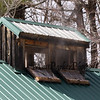"""Letting the steam out at the Lincoln Akerman School 4th grade annual Sugaring Off Maple Syrup Party on Saturday 3-17-2018 @ the, """"LAS Sugar Shack"""", Hampton Falls, NH.  Matt Parker Phtotos"""