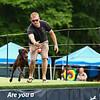 DockDogs Big Air Canine Aquatics Competition sponsored by Smuttynose Brewing Company on Sunday 6-30-2019 @ Hampton, NH.  [Matt Parker/Seacoastonline]