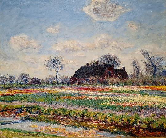 """Denver Art Museum – Monet """"Tulip Fields at Sassenheim"""""""
