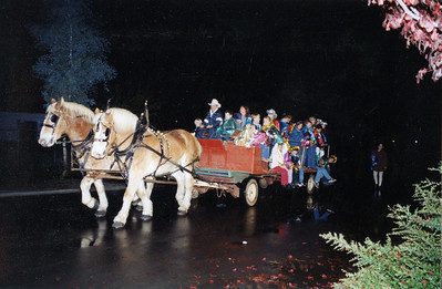 Donley 1995