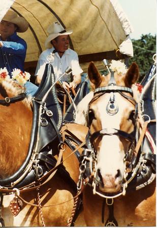 Donley 1986