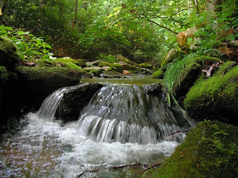 Nameless Creek: detail