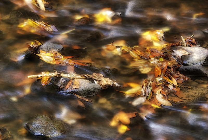Howell Creek: Detail