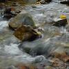 October Rains: Goose Creek