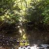 Howell Creek