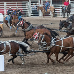 Calgary Stampede 2017