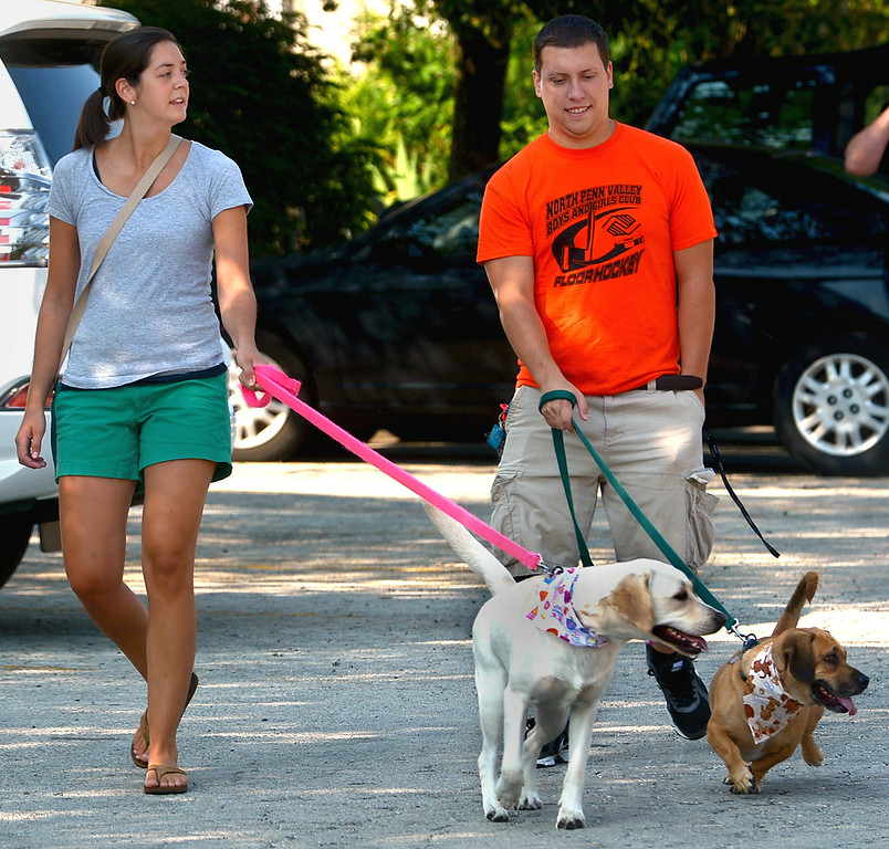 . Kelly Kreamer with her Labrador, Luna, and Matt Curtis with his beagle/bassett mix, Mr. Weasley, lead their pets to the registration table for the Ambler Dog Days Parade Saturday, Aug. 9, 2014.  Montgomery Media staff photo by Bob Raines