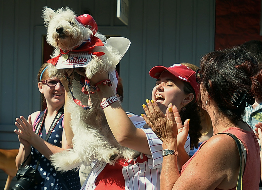 . Dante, a West Highland terrier, and owner Marilee Gallagher were judged Best Dressed in Sports Attire following the Ambler Dog Days Parade Saturday, Aug. 9, 2014.  Montgomery Media staff photo by Bob Raines