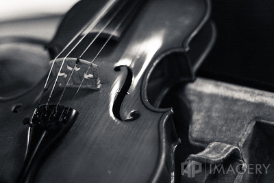 Fiddle - B&W