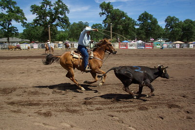 2012 Middletown Days WSRRA Ranch Rodeo