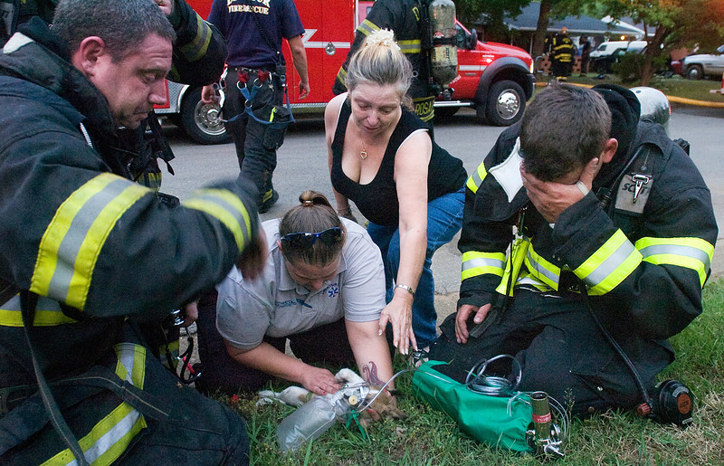 Terrella Joan Otto reaches for her two-month-old puppy, Tookie, as paramedic Cassey Rutherford and Decatur firefighters try to resuscitate the dog, who was in Otto's house when a fire started Wednesday, June 8, 2011. Despite the efforts, Tookie didn't make it.