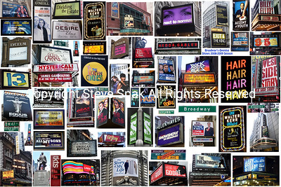Broadway - Shows that opened in 2008-2009 Photo Collage