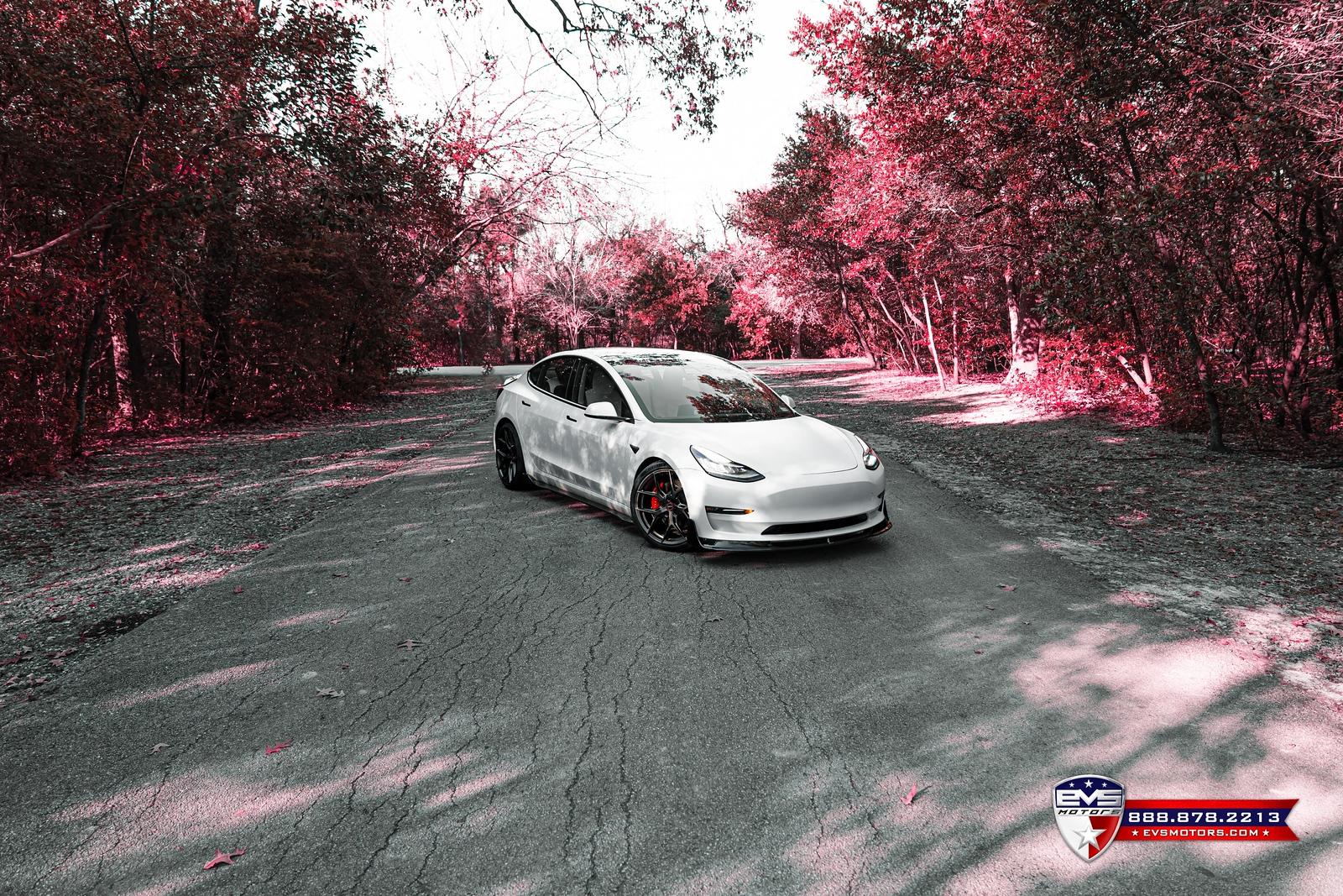 DSC04397-Edit-X3.jpg