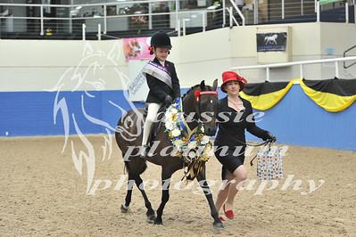 Class 16 Lead Rein Show Pony