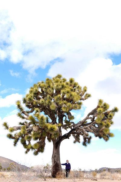Patty Fienup, Joshua Tree National Park