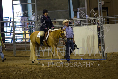 2014 Equitation/Palomino World Show