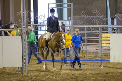 2014 HUS/Palomino World Show