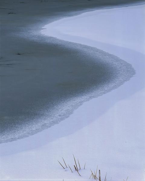 Wyman's Meadow In Winter I