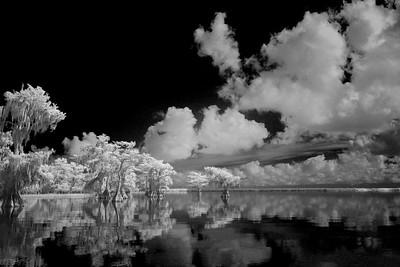 McIntosh_Greg_Morning on the Lake