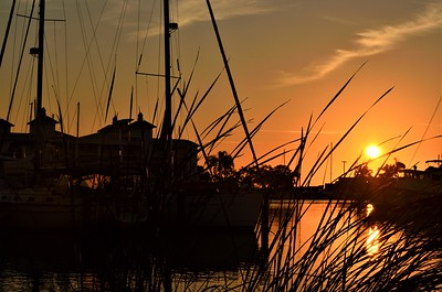 Hicks_Jenn_Sunny Harbour