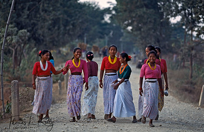 "THE THARU PEOPLE  Traditionally dressed, Tharu girls meander to the Barkha Naach the ""big dance""festival. The Tharu are believed to be the first people to live in the Tarai, the tropical lowland that are both jungle and breadbasket of Nepal. Few people realize that the Tharu, numbering nearly 1.2 milion people, are the fourth largest ethnic group in Nepal.  Dang Valley,  Nepal."